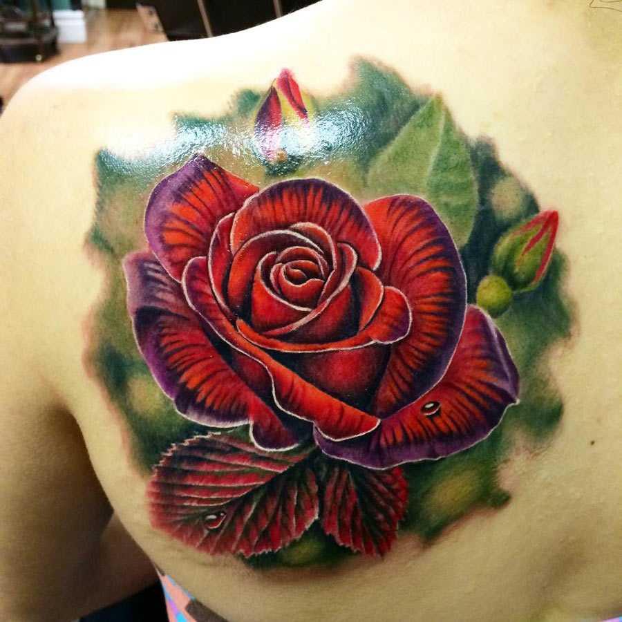 Классическое тату красная роза на лопатке девушки