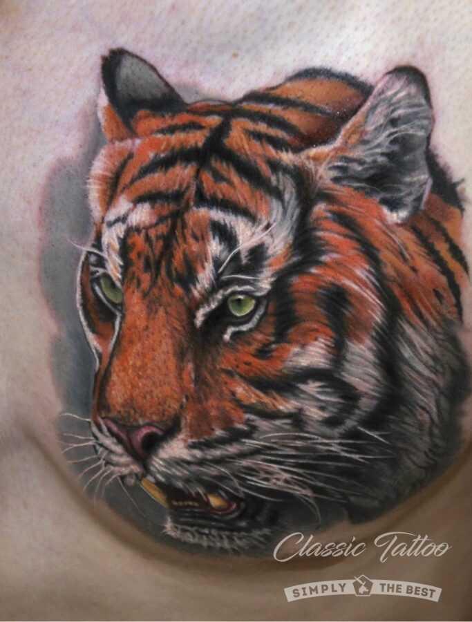 Тату тигр на груди